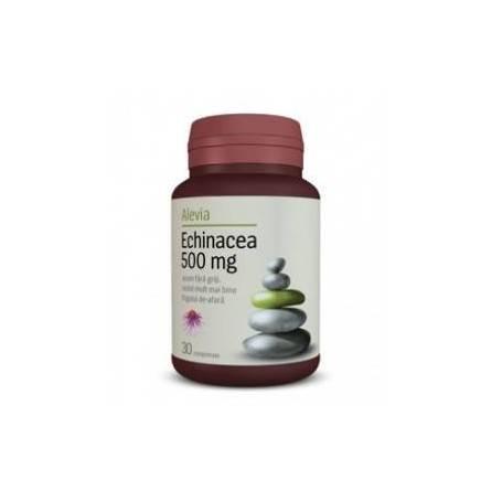 Echinacea 500mg