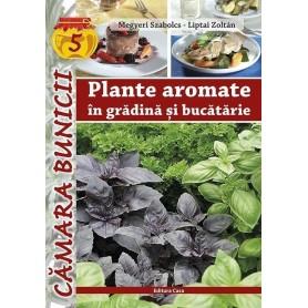 Plante aromate in gradina si bacatarie
