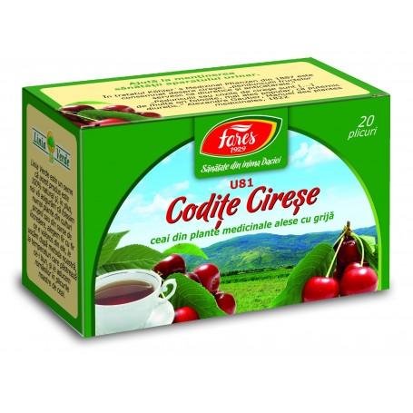 CEAI CODITE CIRESE 20 PLIC