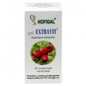 Gal Extravit pentru fortifiere si energizare 30 comprimate masticabile Hofigal
