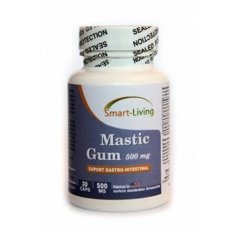 Mastic Gum 60 cps
