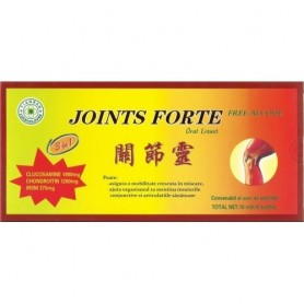Joints Forte 10ml x 10Fiole
