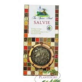 CONDIMENT  SALVIE 20G