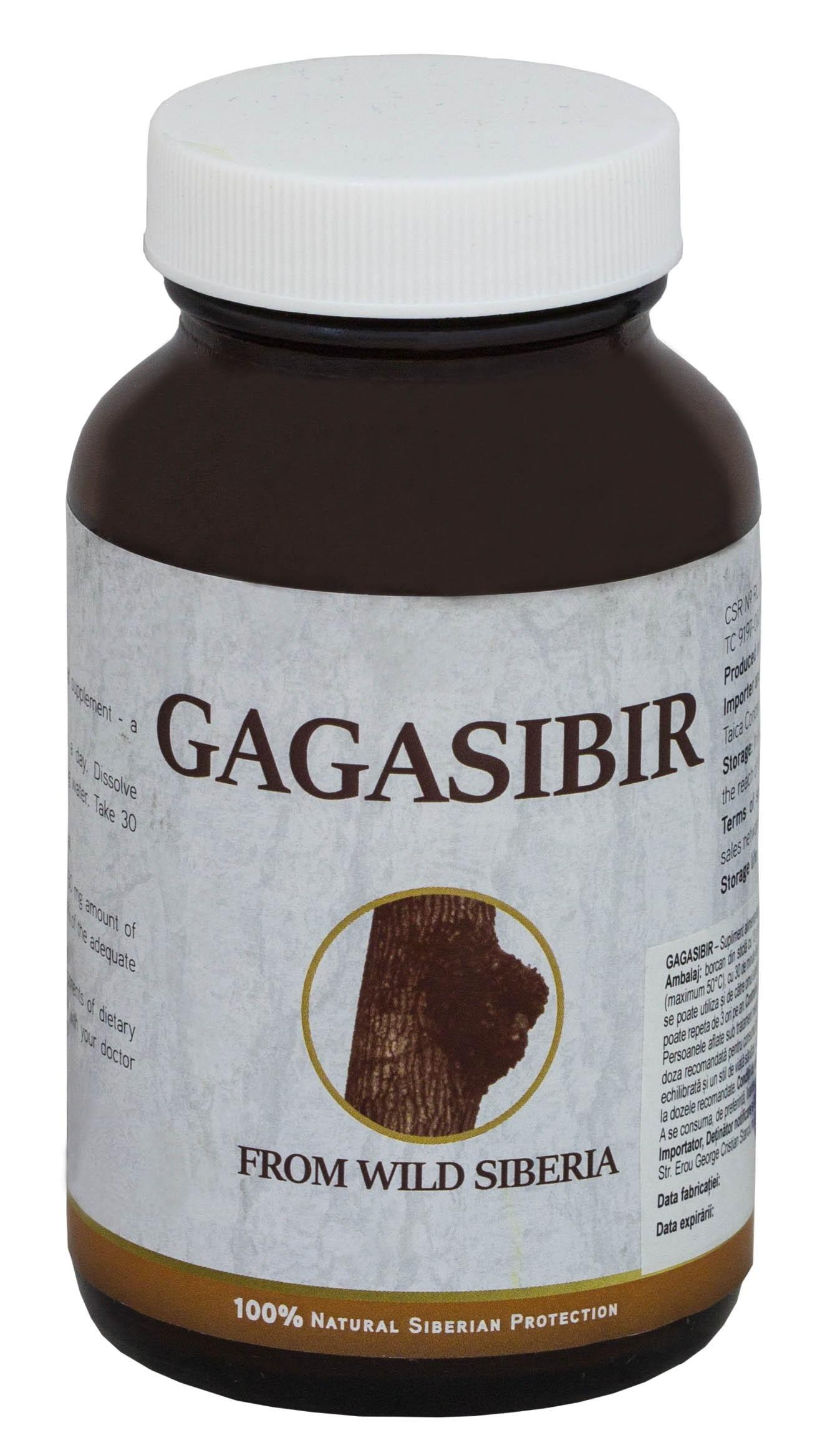 Gagasibir, 13g, Regele Ciupercilor Medicinale, Rusia