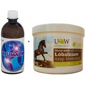 Reumalin + BALSAM PUTEREA CALULUI cu extract de namol 500ml