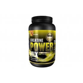 CREATINE POWER MIX PORTOCALE/ MANGO 1KG -GOLDNUTRITION