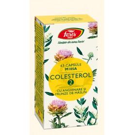 Colesterol 2 cu anghinare si frunze de măslin, 63 capsule