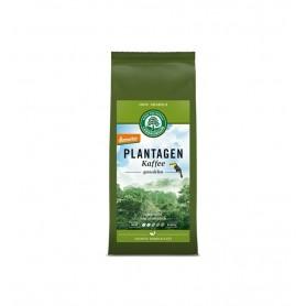 Cafea Macinata Bio de Plantatie 100 % Arabica Lebensbaum - 250 g