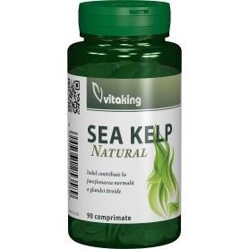 SEA KELP (ALGA MARINA) - 90 COMPRIMATE