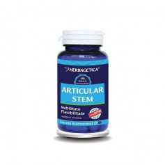 Articular Stem 60cps Herbagetica