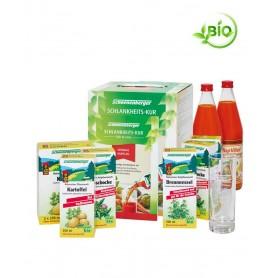 Cură de Detoxifiere Schoenenberger TopVital Mango