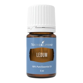 Ulei Esential Ledum (Rozmarin Salbatic) Young Living - 5 ML