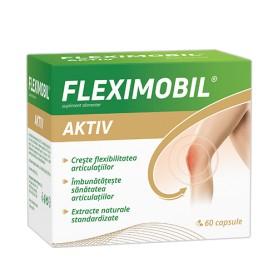 FLEXIMOBIL AKTIV 60CPS