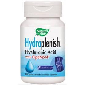 Hydraplenish Plus Msm, 60cps Secom