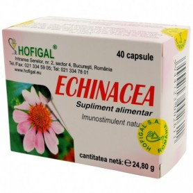 Echinacea extract concentrat 40CPS (capsule x0,5g)