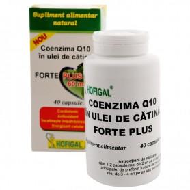 COENZIMA Q10 FORTE PLUS 40CPS