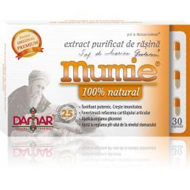 EXTRACT PURIFICAT DE RASINA MUMIE - 30 CPS DAMAR
