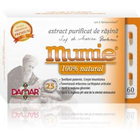 EXTRACT PURIFICAT DE RASINA MUMIE - 60 CPS DAMAR