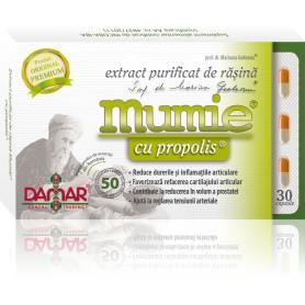 EXTRACT PURIFICAT DE RASINA MUMIE CU PROPOLIS - 30 CPS DAMAR