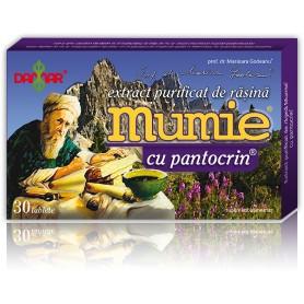 EXTRACT PURIFICAT DE RASINA MUMIE CU PANTOCRIN - 30 TB DAMAR