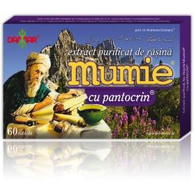 EXTRACT PURIFICAT DE RASINA MUMIE CU PANTOCRIN - 60 TB DAMAR