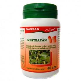 MESTEACAN 40CPS