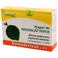 Muguri de mesteacan pufos - Gemoderivat 30 monodoza Hofigal