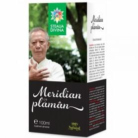 Meridian Plaman, Tinctura 100ML Steaua Divina