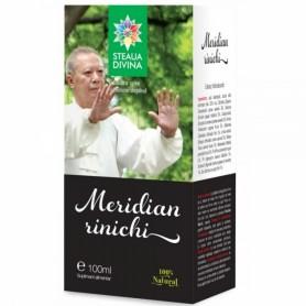 Meridian Rinichi, Tinctura 100ML Steaua Divina