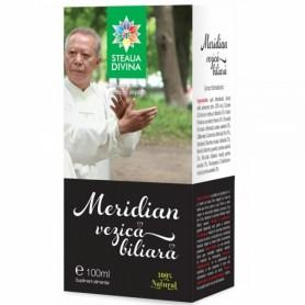 Meridian Vezica Biliara, Tinctura 100ML Steaua Divina