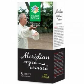 Meridian Vezica Urinara, Tinctura 100ML Steaua Divina