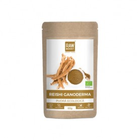 REISHI PUDRA ECOLOGICA 60G