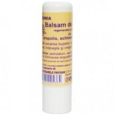 VIRGINIA BALSAM BUZE-P 5ML