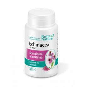 Echinacea Extract, 30 capsule Rotta Natura