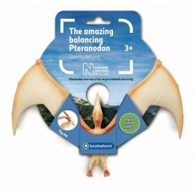 Incredibilul Pteranodon Natural History Museum N5150 Initiala