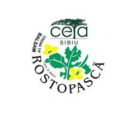 UNGUENT ROSTOPASCA 40GR CETA