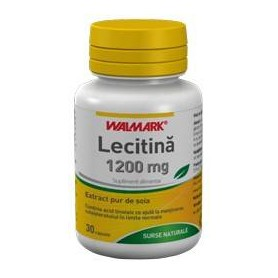 LECITINA 1200MG 30CPS N.B.
