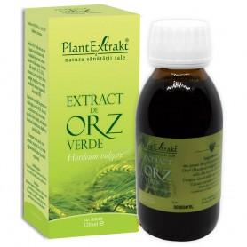 EXTRACT DE ORZ VERDE 120ML