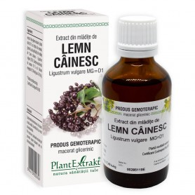Extract din Mladite de Lemn Cainesc, 50ML Plantextrakt