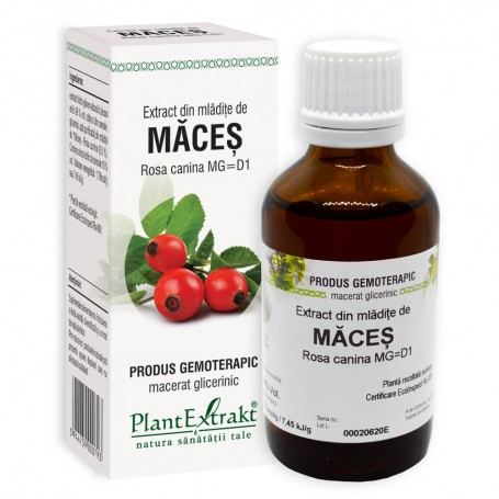 EXTRACT DIN MLADITE DE MACES 50ML