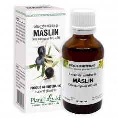 EXTRACT DIN MLADITE DE MASLIN 50 ML
