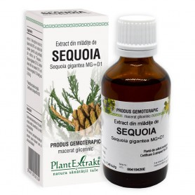 EXTRACT MLADITE SEQUOIA 50ML