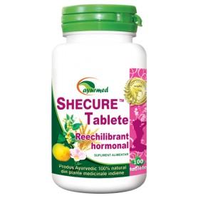 SHECURE 100 TB