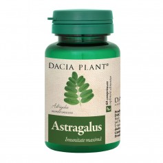 ASTRAGALUS 60TB