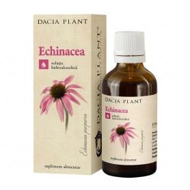EXTRACT ECHINACEA 50 ML