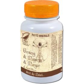 Ginseng, Magneziu si Mangan, 60 capsule Pro Natura