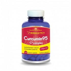 CURCUMIN 95 C3 COMPLEX