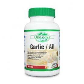 GARLIC / AIL 500 MG 100CPS