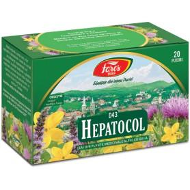 CEAI HEPATOCOL 20 PLIC