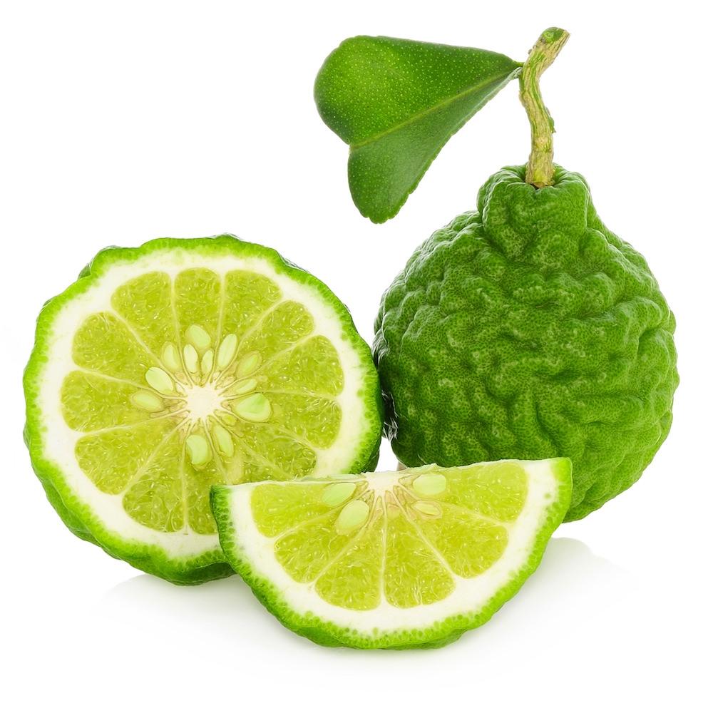 bergamota-plantum-ro